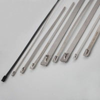 Litex stainless steel ties