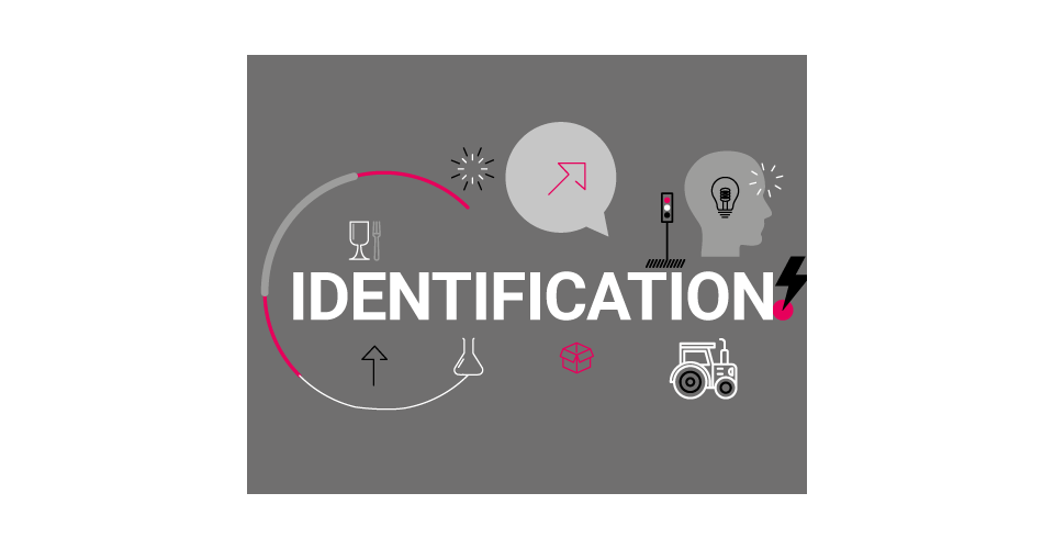 Articulos de identification